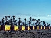 Agdal Gärten in Marrakesch