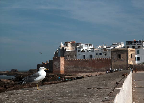 Essaouira Panorama marokko