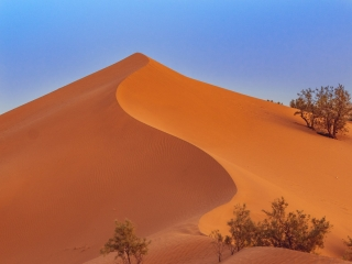 Sanddüne am Erg Chegaga in Marokko