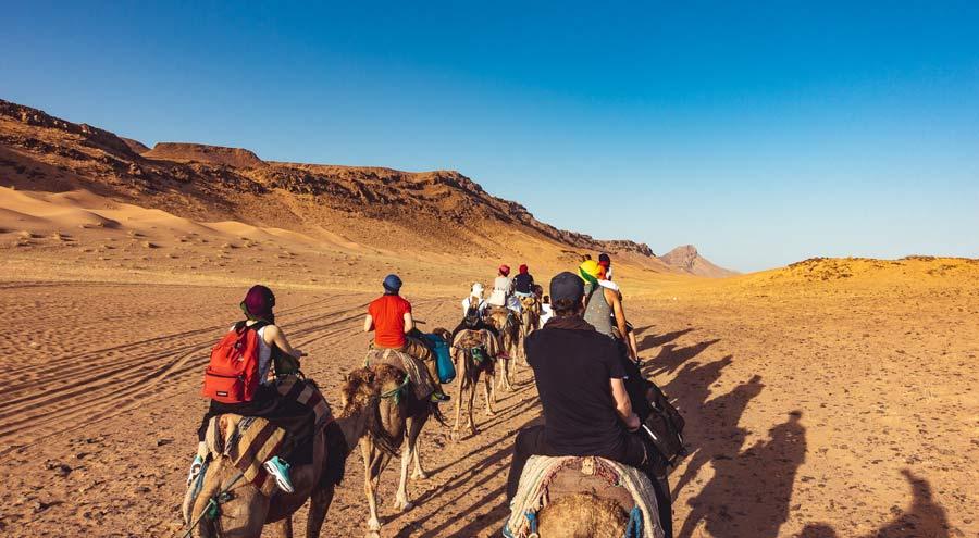 Dromedarritt zum Wüstencamp in Marokko