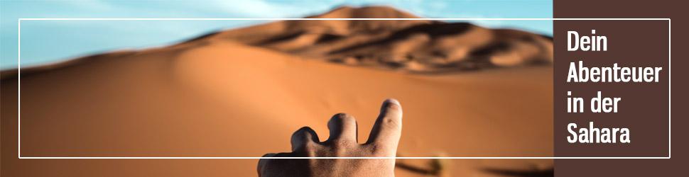 Tour in die Sahara