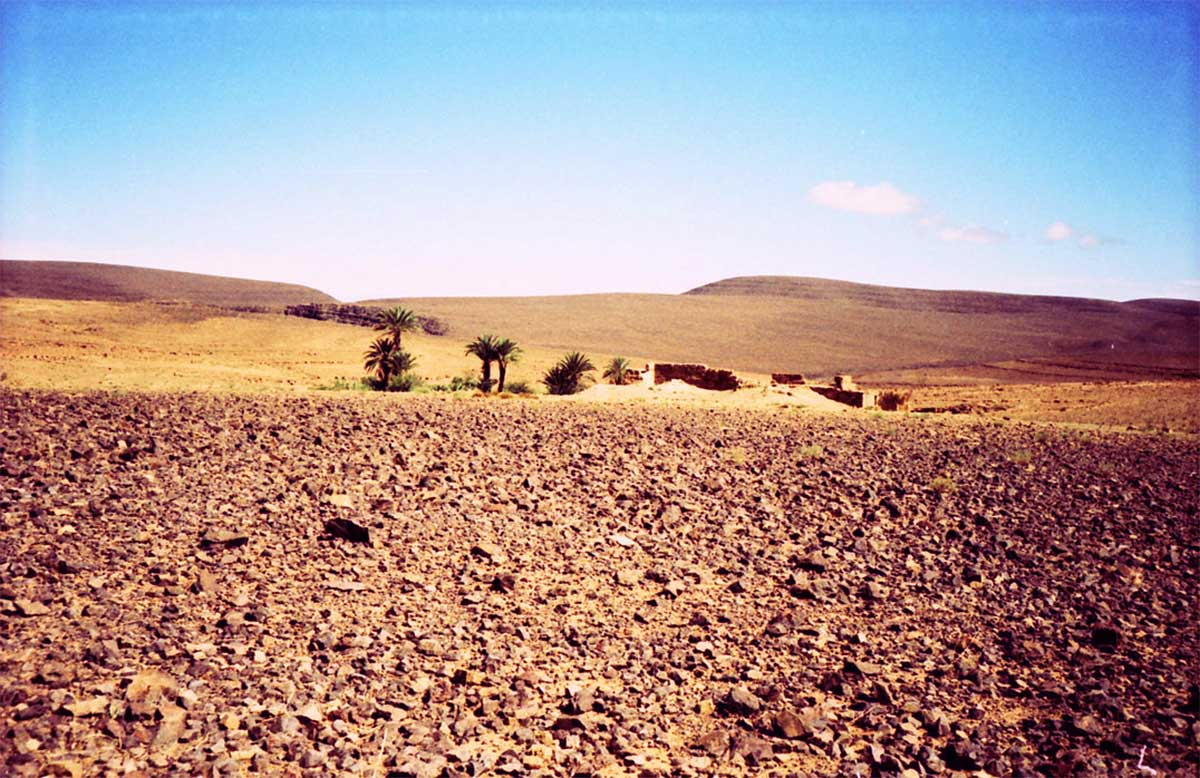 steinwueste in der Sahara, Marokko